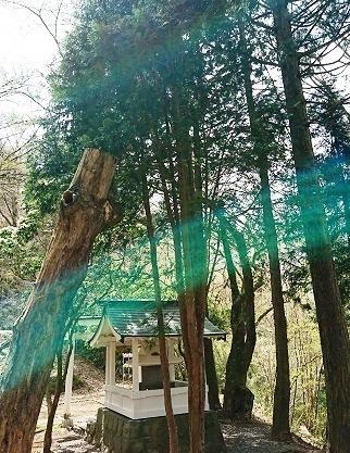 DSC_1313箱根神社.jpg