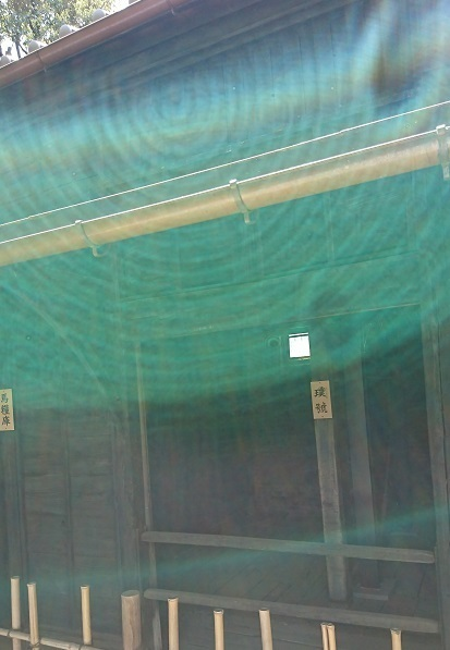 DSC_2240乃木神社.jpg