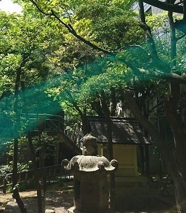 DSC_2255乃木神社.jpg