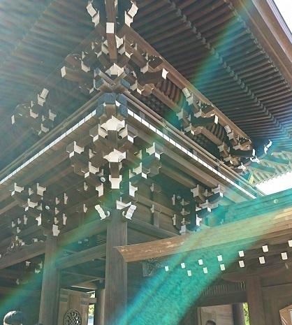 DSC_2445明治神宮.jpg