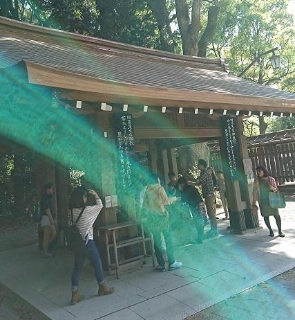 DSC_2467明治神宮.jpg