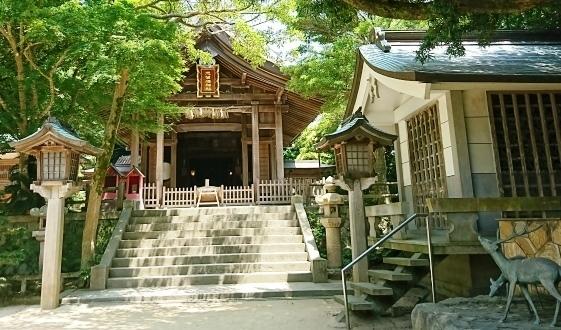 DSC_4276志賀海神社.JPG