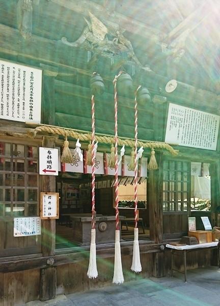 桜井神社DSC_5582.JPG