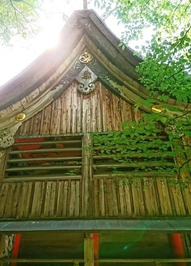 桜井神社DSC_5603.JPG