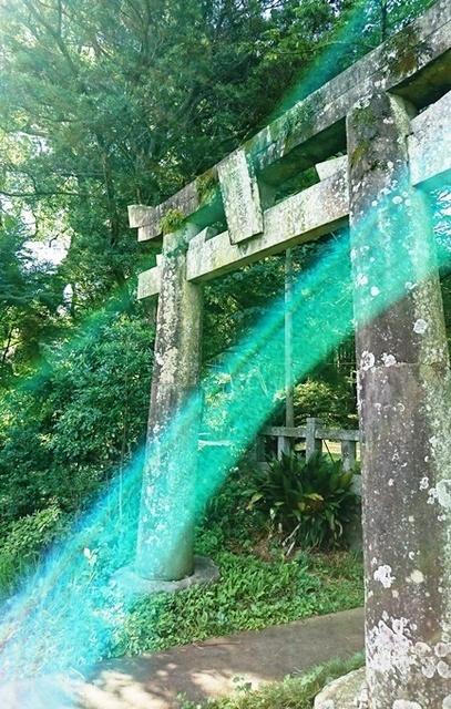 神在神社DSC_5538.JPG
