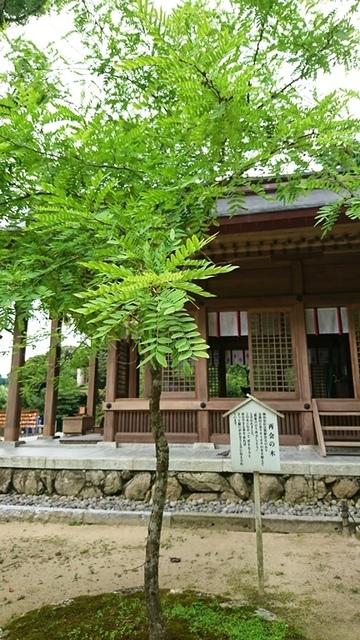 竈神社DSC_6233.JPG