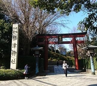DSC_0046根津神社.jpg