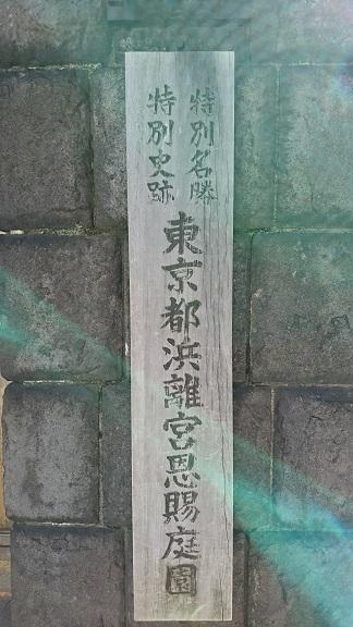 DSC_0103浜離宮.jpg