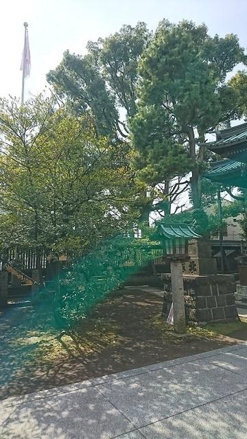 DSC_0229荏原神社.jpg