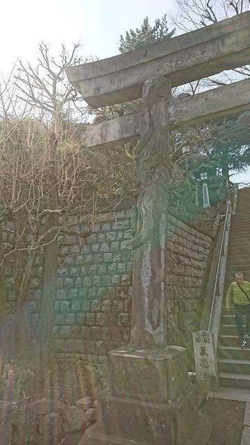 DSC_0234品川神社.jpg