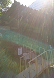 DSC_0323大円寺.jpg