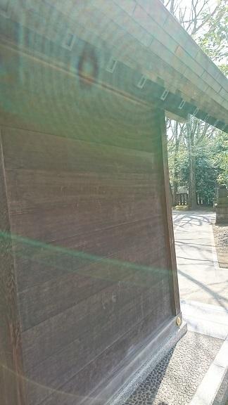 DSC_0575富岡八幡宮.jpg