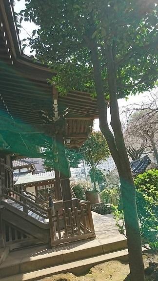 DSC_0618白山神社.jpg