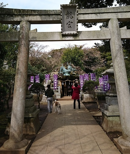 DSC_0769江島神社.jpg