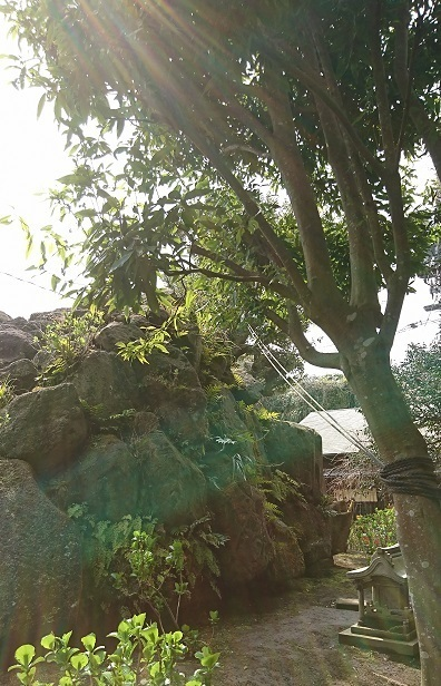 DSC_0782江島神社.jpg