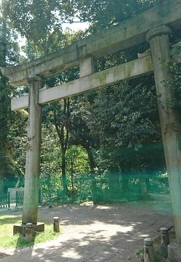 DSC_1042氷川神社.jpg