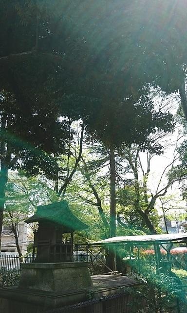 DSC_1203渋沢庭園.jpg