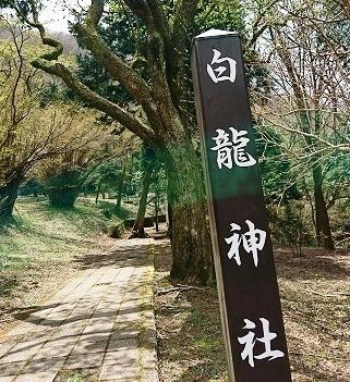 DSC_1310箱根神社.jpg