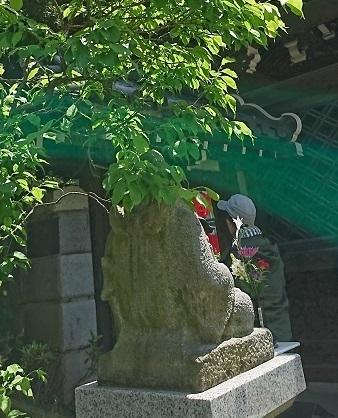 DSC_2162豊川稲荷.jpg