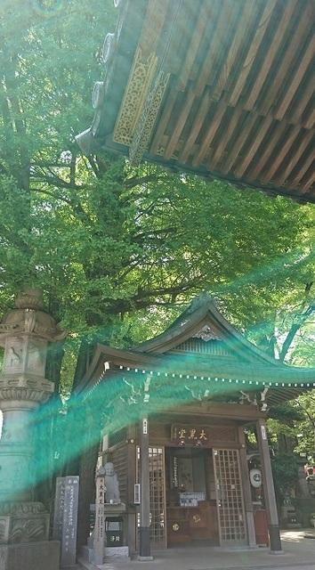 DSC_2209豊川稲荷.jpg