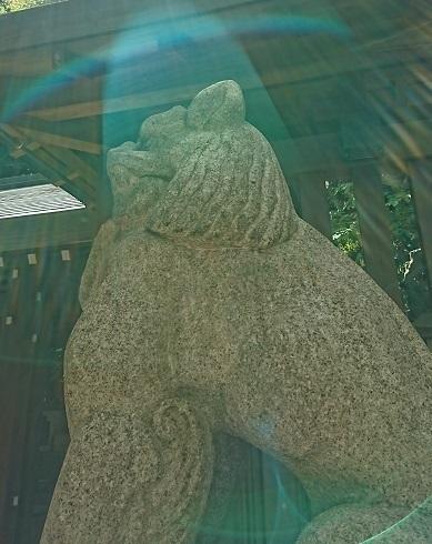 DSC_2266乃木神社.jpg