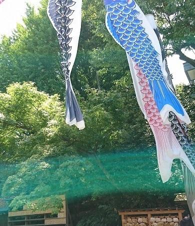 DSC_2308乃木神社.jpg