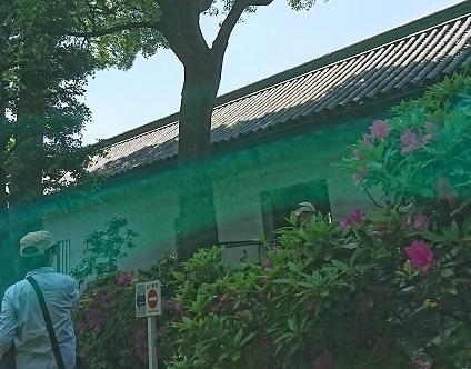 DSC_2627皇居.jpg
