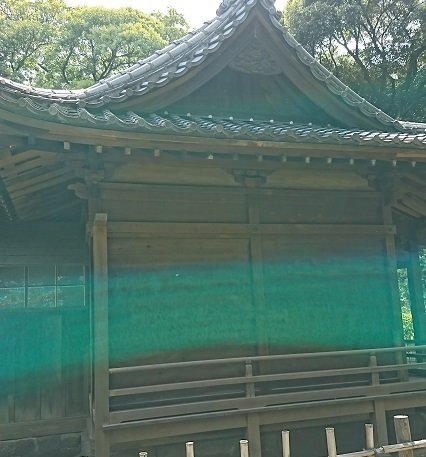 DSC_2908浜離宮.jpg