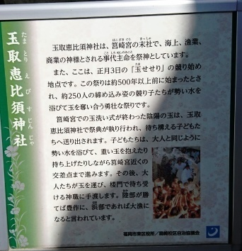 DSC_3962筥崎宮.JPG