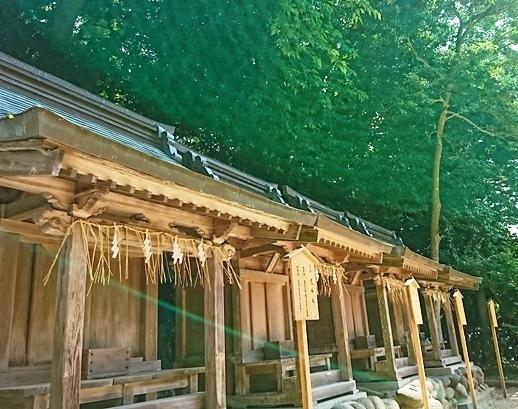 DSC_4221志賀海神社.JPG