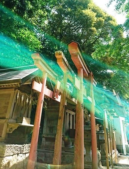 DSC_4248志賀海神社.JPG