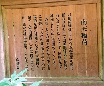 DSC_4728南蔵院.JPG
