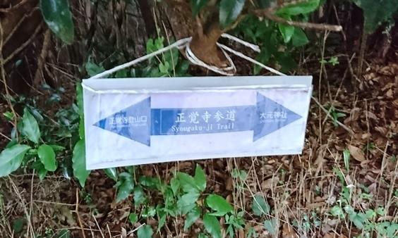 大元神社DSC_5893.JPG