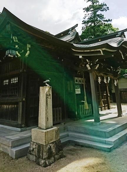 大分八幡宮DSC_5742.JPG