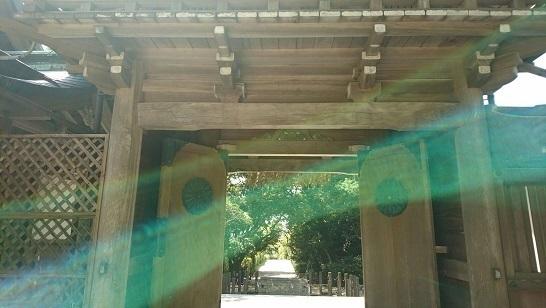志賀海神社1492840784805.jpg