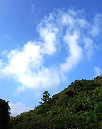 志賀海神社DSC_6295.JPG