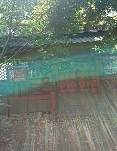 根津神社.PNG