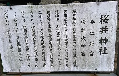桜井神社DSC_5567.JPG