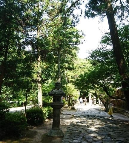 桜井神社DSC_5575.JPG