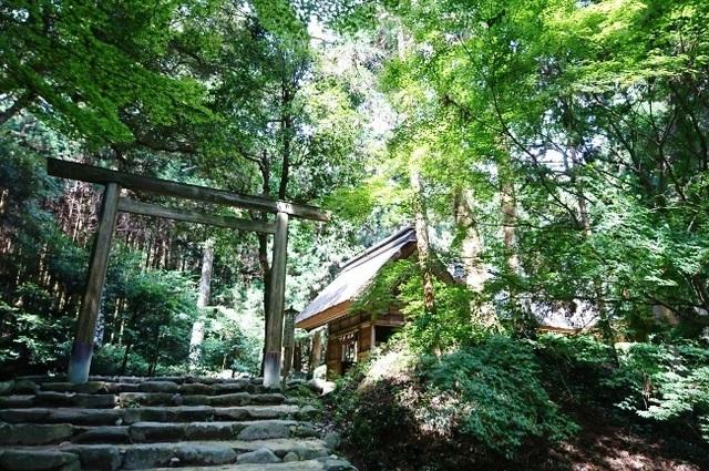 桜井神社DSC_5633.JPG