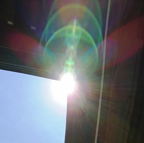櫛田神社DSC_4541.JPG