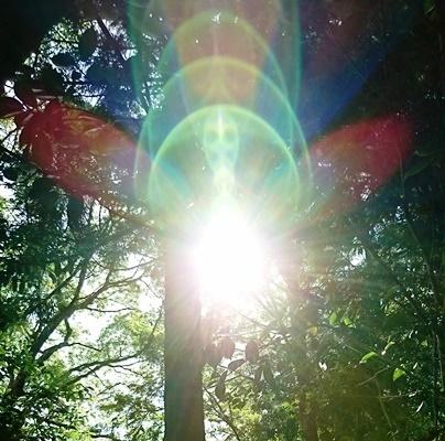 神在神社DSC_5534.JPG