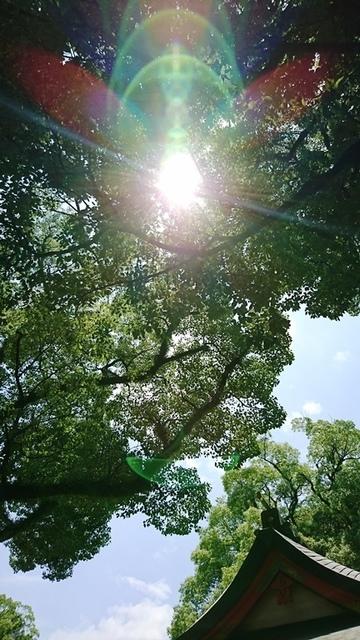 荒田八幡DSC_5275.JPG