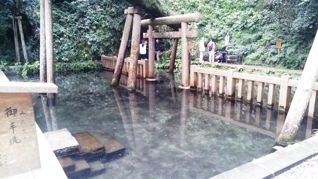 鹿島神宮DSC_0519.JPG