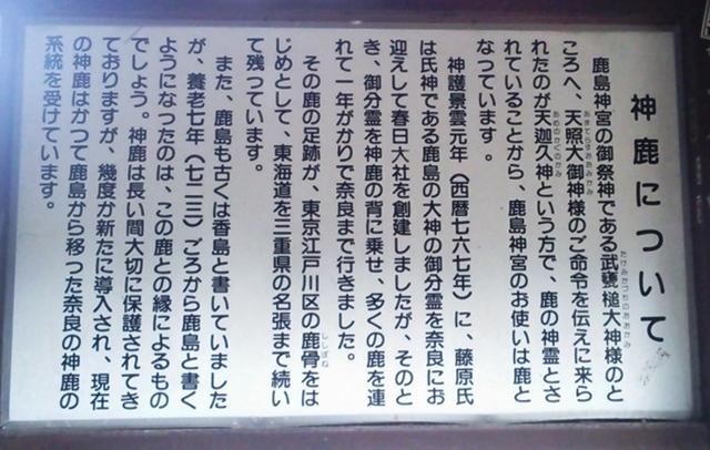 鹿島神宮DSC_0523.JPG